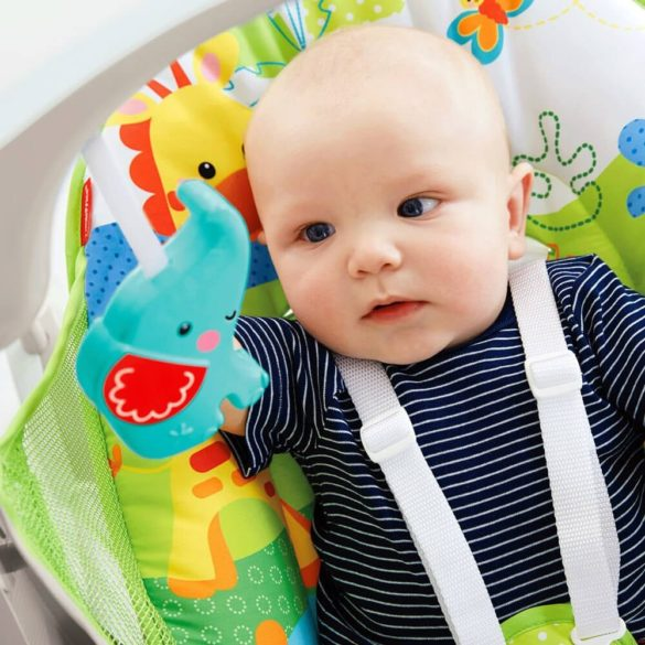 Leagan si scaun nou nascuti pliabil Fisher Price 3
