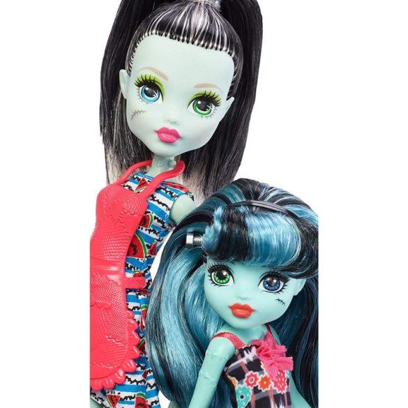 Monster High Family Papusa Frankie Stein si Alivia Stein 3