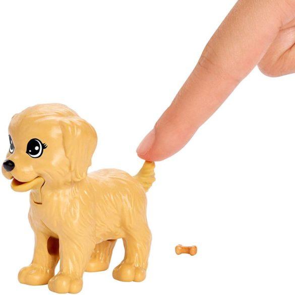 Set de joaca Mattel Barbie Papusa si animale de companie 4