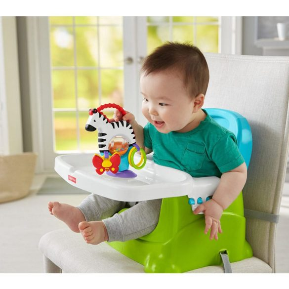Zebra cu Activitati Fisher Price 6