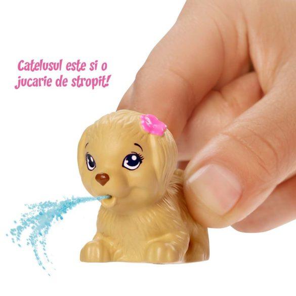 Papusa Barbie Inotatoare cu Rampa de Sarituri 4