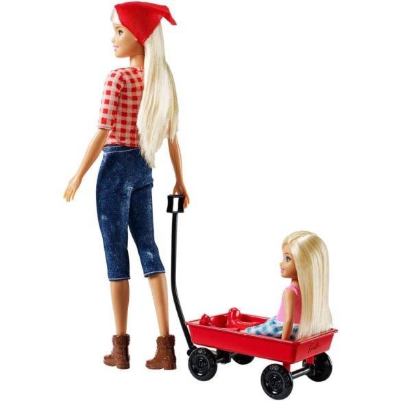 Barbie si Ferma de Vis Papusa Chelsea si Accesorii 3
