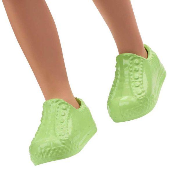 Barbie si Clubul Fluturasilor Papusa Baiat cu Skate 5