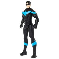 Figurina Articulata Nightwing, Colectia Spin Master
